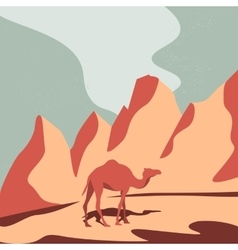 Camel and desert vector