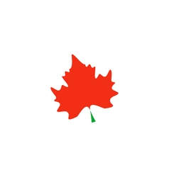 Maple Icon vector image