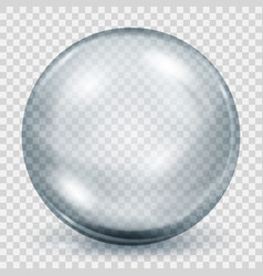transparent gray sphere with shadow vector image vector image