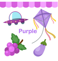 isolated color purple group vector image