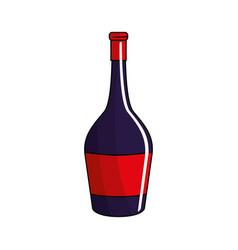 Bottle of wine tasty liquor beverage vector