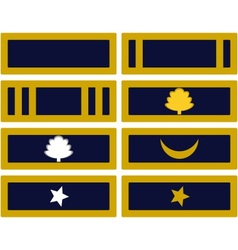 Insignia Army of Mississippi vector image