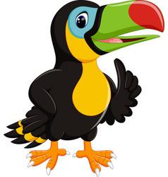 cute toucan cartoon vector image