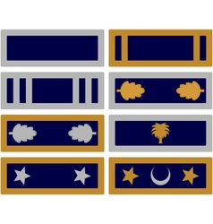 Insignia volunteer forces of South Carolina vector image