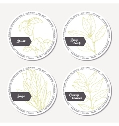 Set of stickers for package design with sage bay vector image vector image