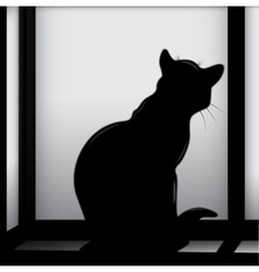 Cat on the window vector image vector image