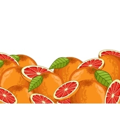 Grapefruit composition isolated vector