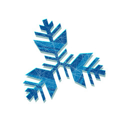 snowflake abstract snowflake of geometric vector image vector image