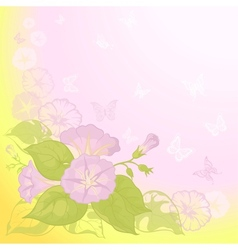 background with flowers ipomoea vector image