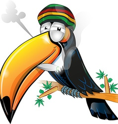 Jamaican toucan cartoon isolated on white vector