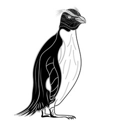 Penguin emperor bird head as symbol for mascot or vector