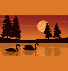 Silhouette of swan beauty scenery vector