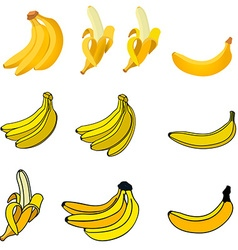 Set of the fresh banana icons vector