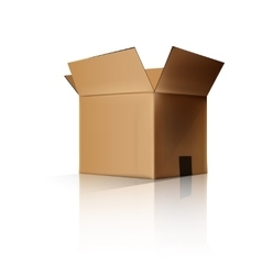 cardboard box opened vector image