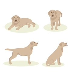 Set dog labrador vector