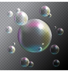 Transparent Bubbles on Gray Background vector image