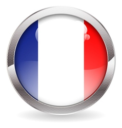 Gloss Button with French Flag vector image