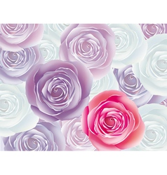 background from rose vector image vector image