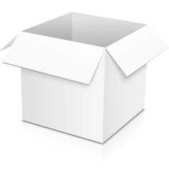White isolated paper box vector image vector image