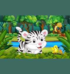 white tiger in the forest vector image