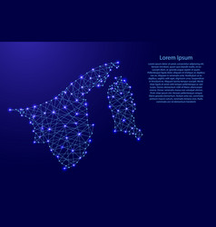 Map of brunei from polygonal blue lines vector
