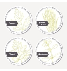 Set of stickers for package design with lovage vector