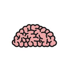 brain organ human intelligence concept vector image