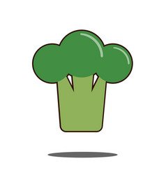 broccoli raw modern flat style cartoon vector image