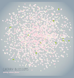 cherry blossoms spring card japanese culture vector image