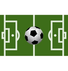 football field with a soccer ball vector image