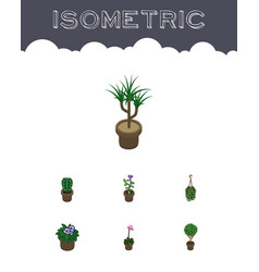 Isometric plant set of flower tree flowerpot and vector