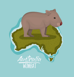 Poster wombat in australia map in green surrounded vector