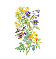 Watercolor wildflowers and leaves on white vector