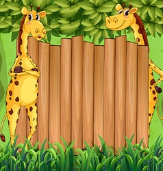Border design with two giraffes vector image
