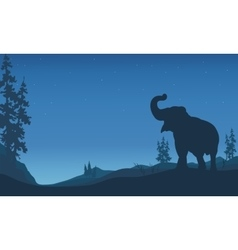 Elephant silhouettes in hill vector