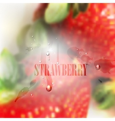 fresh blurred food background with strawberries vector image vector image