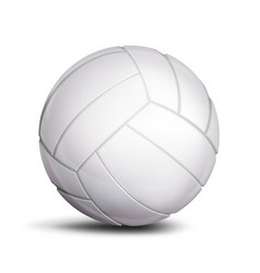 volleyball ball sport game fitness symbol vector image