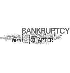 a look at personal bankruptcy what to expect text vector image vector image