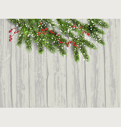 fir tree and berries background vector image vector image
