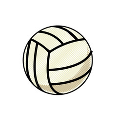 drawing volleyball ball sport competition element vector image