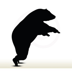 Animal bear silhouette on white background vector