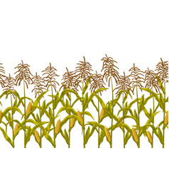 corn maize seamless horizontal border vector image vector image
