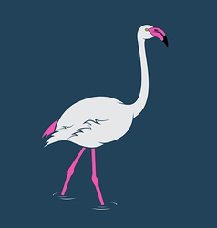 image of an flamingo vector image