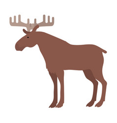 moose in flat design vector image vector image