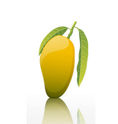 The-sweet-mango-fruit-isolated-on-white-background vector