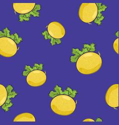 Seamless pattern melon on purple background vector