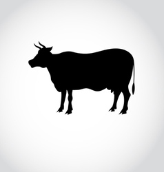 Sign silhouette of a cow vector