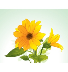 Yellow flower in bloom vector
