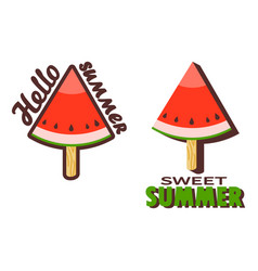 watermelon popsicle stick vector image