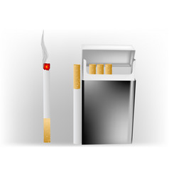 cigarette in a pack vector image vector image